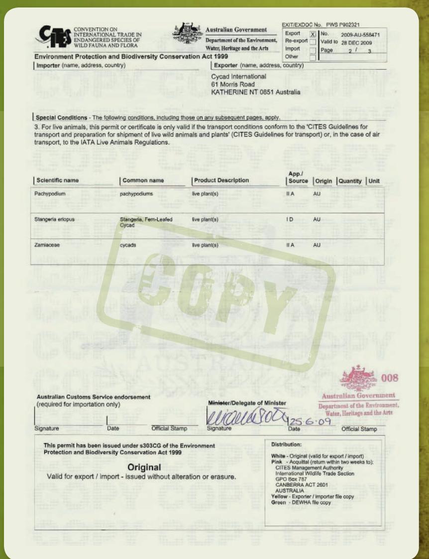 Cycad International export permit